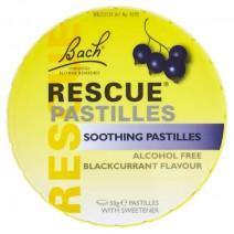 NUTREND N1 Blackcurrant 10 x 17g