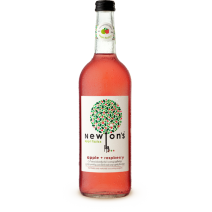 Newtons Appl Fizzics Raspberry & Apple 330ml