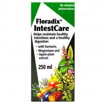 Floradix IntestCare 250ml